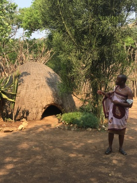 A traditional healer's hut, with plans and herbs outside that would be used for treatment