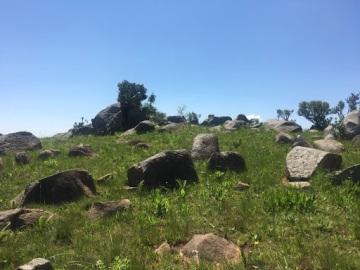 swazi rocks 2